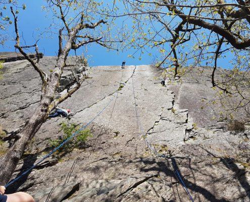 Rotswand klimmen tijdens een bedrijfsuitje in de Ardennen
