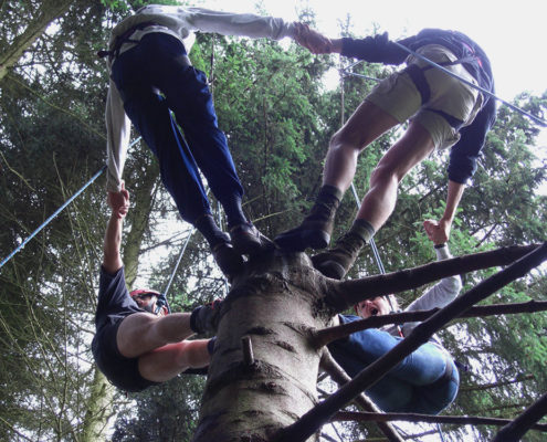 Tree of Trust tijdens een training & teambuilding in de Ardennen