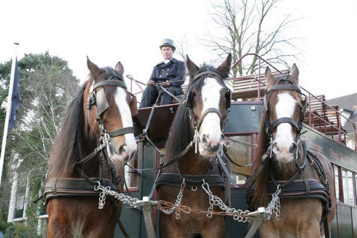 Paardentram tijdens een leuk personeelsuitje in Gelderland