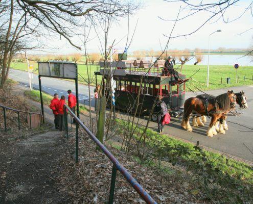 Paardentram tijdens een leuk bedijfsuitje